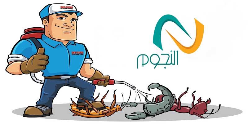 صورة شركة مكافحة الحشرات بالطائف