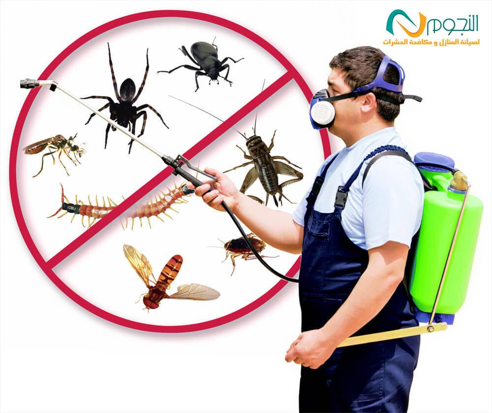 نصائح للقضاء علي الحشرات