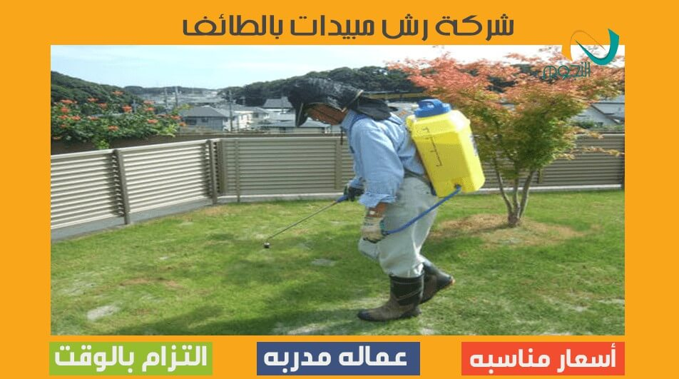 شركة رش مبيدات بالطائف